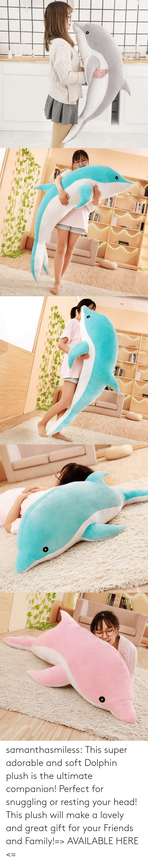 Resting: samanthasmiless:  This super adorable and soft Dolphin plush is the ultimate companion! Perfect for snuggling or resting your head! This plush will make a lovely and great gift for your Friends and Family!=> AVAILABLE HERE <=