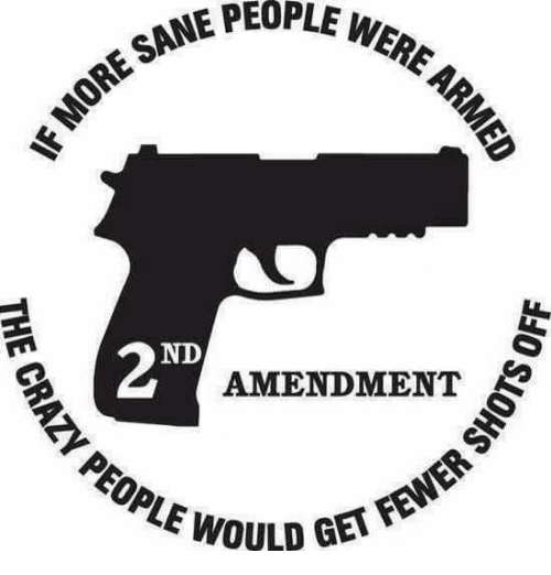Memes, 🤖, and Ore: SAME PEOPLE WERE  ORE SANE PE  ND  AMENDMENT  WOULD GETF