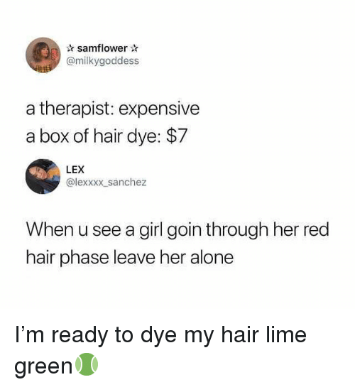 red hair: samflower  @milkygoddess  a therapist: expensive  a box of hair dye: $7  LEX  @lexxxx sanchez  When u see a girl goin through her red  hair phase leave her alone I'm ready to dye my hair lime green🎾