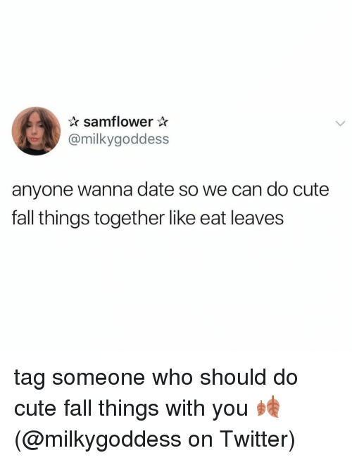 Cute, Fall, and Memes: samflower *  @milkygoddess  anyone wanna date so we can do cute  fall things together like eat leaves tag someone who should do cute fall things with you 🍂 (@milkygoddess on Twitter)