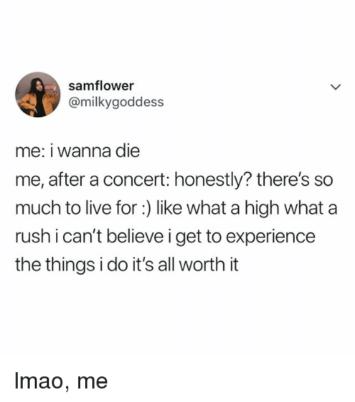 Lmao, Live, and Rush: samflower  @milkygoddess  me: i wanna die  me, after a concert: honestly? there's so  much to live for :) like what a high what a  rush i can't believe i get to experience  the things i do it's all worth it lmao, me