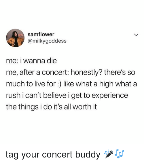 Live, Rush, and Relatable: samflower  @milkygoddess  me: i wanna die  me, after a concert: honestly? there's so  much to live for:) like what a high what a  rush i can't believe i get to experience  the things i do it's all worth it tag your concert buddy 🎤🎶
