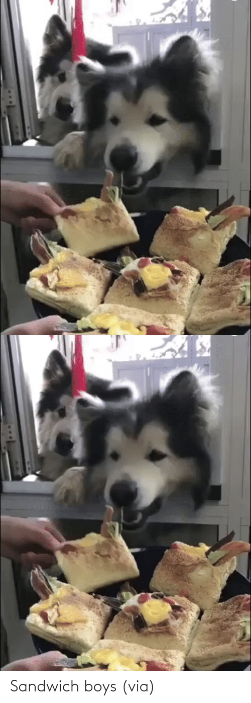 boys: Sandwich boys (via)