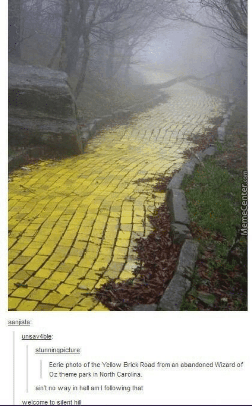 Wizard of Oz: sanista  unsav4ble  Eerie photo of the Yellow Brick Road from an abandoned Wizard of  Oz theme park in North Carolina.  ain't no way in hell amI following that