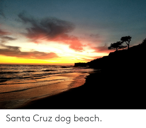 Santa Cruz: Santa Cruz dog beach.