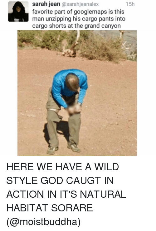 the grand canyon: sarah jean  asarahjeanalex  15h  favorite part of googlemaps is this  man unzipping his cargo pants into  cargo shorts at the grand canyon HERE WE HAVE A WILD STYLE GOD CAUGT IN ACTION IN IT'S NATURAL HABITAT SORARE (@moistbuddha)
