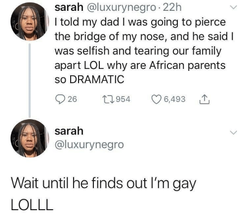 tearing: sarah @luxurynegro 22h  I told my dad I was going to pierce  the bridge of my nose, and he said I  was selfish and tearing our family  apart LOL why are African parents  so DRAMATIC  26 t954 6,493  sarah  @luxurynegro  Wait until he finds out I'm gay  LOLLL