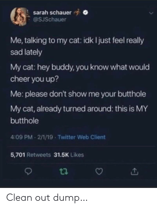 Sarah: sarah schauer  @SJSchauer  Me, talking to my cat: idk I just feel really  sad lately  My cat: hey buddy, you know what would  cheer you up?  Me: please don't show me your butthole  My cat, already turned around: this is MY  butthole  4:09 PM 2/1/19 - Twitter Web Client  5,701 Retweets 31.5K Likes Clean out dump…