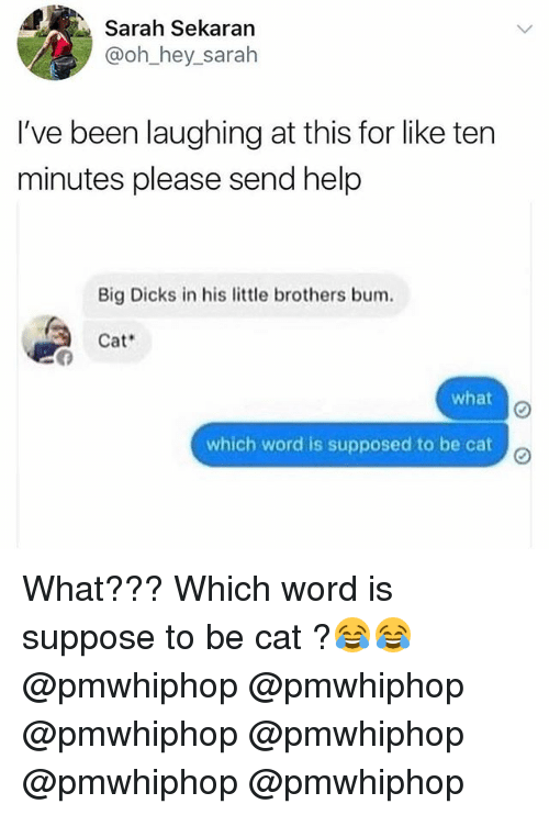 Dicks, Memes, and Help: Sarah Sekaran  @oh hey sarah  I've been laughing at this for like ten  minutes please send help  Big Dicks in his little brothers bum.  Cat  what  which word is supposed to be cat What??? Which word is suppose to be cat ?😂😂 @pmwhiphop @pmwhiphop @pmwhiphop @pmwhiphop @pmwhiphop @pmwhiphop