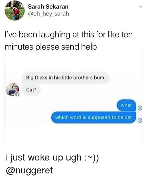 Dicks, Memes, and Help: Sarah Sekaran  @oh_hey_sarah  I've been laughing at this for like ten  minutes please send help  Big Dicks in his tle brothers bum.  Cat  what  which word is supposed to be cat i just woke up ugh :~)) @nuggeret