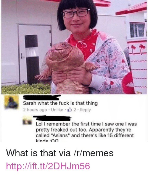 """Apparently, Lol, and Memes: Sarah what the fuck is that thing  2 hours ago Unlike 2 Reply  Lol I remember the first time I saw one I was  pretty freaked out too. Apparently they're  called """"Asians"""" and there's like 15 different  kinds Q <p>What is that via /r/memes <a href=""""http://ift.tt/2DHJm56"""">http://ift.tt/2DHJm56</a></p>"""