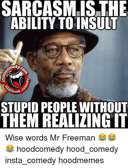 sarcasm is the ability to insult medy hood stupid people 218296 sarcasm is the ability to insult medy stupid people without them
