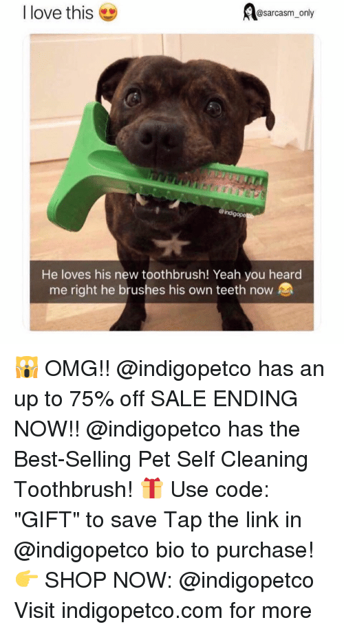 """Toothbrush: @sarcasm_only  I love this  ind  gope  He loves his new toothbrush! Yeah you heard  me right he brushes his own teeth now 🙀 OMG!! @indigopetco has an up to 75% off SALE ENDING NOW!! @indigopetco has the Best-Selling Pet Self Cleaning Toothbrush! 🎁 Use code: """"GIFT"""" to save Tap the link in @indigopetco bio to purchase! 👉 SHOP NOW: @indigopetco Visit indigopetco.com for more"""