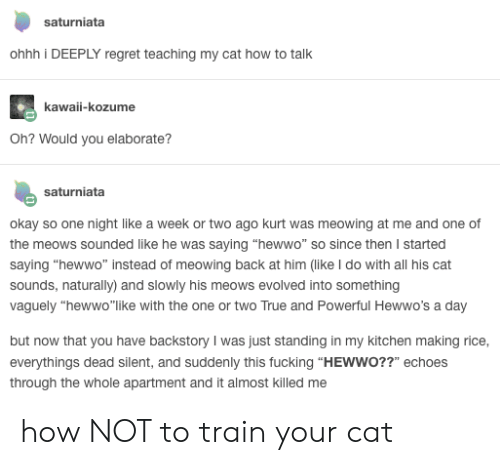 """echoes: saturniata  ohhh i DEEPLY regret teaching my cat how to talk  kawaii-kozume  Oh? Would you elaborate?  saturniata  okay so one night like a week or two ago kurt was meowing at me and one of  the meows sounded like he was saying """"hewwo"""" so since then I started  saying """"hewwo"""" instead of meowing back at him (like I do with all his cat  sounds, naturally) and slowly his meows evolved into something  vaguely """"hewwo""""like with the one or two True and Powerful Hewwo's a day  but now that you have backstory I was just standing in my kitchen making rice,  everythings dead silent, and suddenly this fucking """"HEWWO??"""" echoes  through the whole apartment and it almost killed me how NOT to train your cat"""