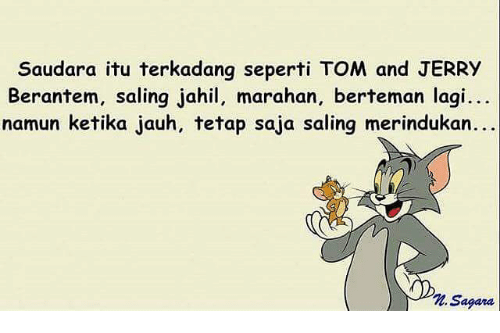 Funny Tom And Jerry Memes Of 2016 On Sizzle
