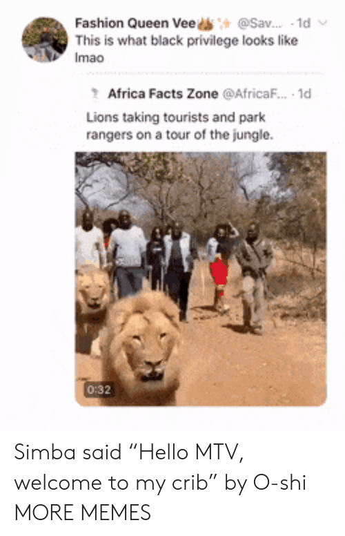 """Welcome To My Crib: @Sav. 1d  Fashion Queen Vee  This is what black privilege looks like  Imao  Africa Facts Zone @AfricaF.. 1d  Lions taking tourists and park  rangers on a tour of the jungle  0:32 Simba said """"Hello MTV, welcome to my crib"""" by O-shi MORE MEMES"""