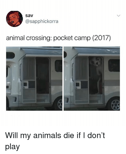 Animals, Memes, and Animal: sav  @sapphickorra  animal crossing: pocket camp (2O1/) Will my animals die if I don't play