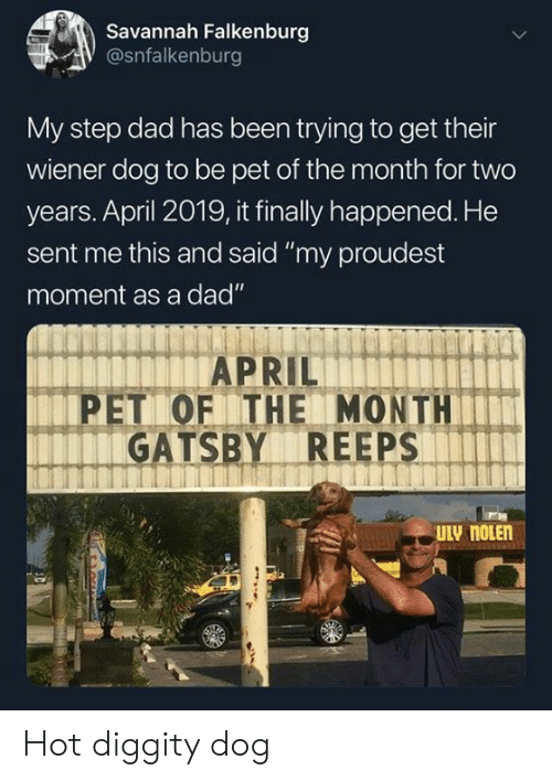 """gatsby: Savannah Falkenburg  @snfalkenburg  My step dad has been trying to get their  wiener dog to be pet of the month for two  years. April 2019, it finally happened. He  sent me this and said """"my proudest  moment as a dad""""  PET OF THE MONTH  GATSBY REEPS Hot diggity dog"""