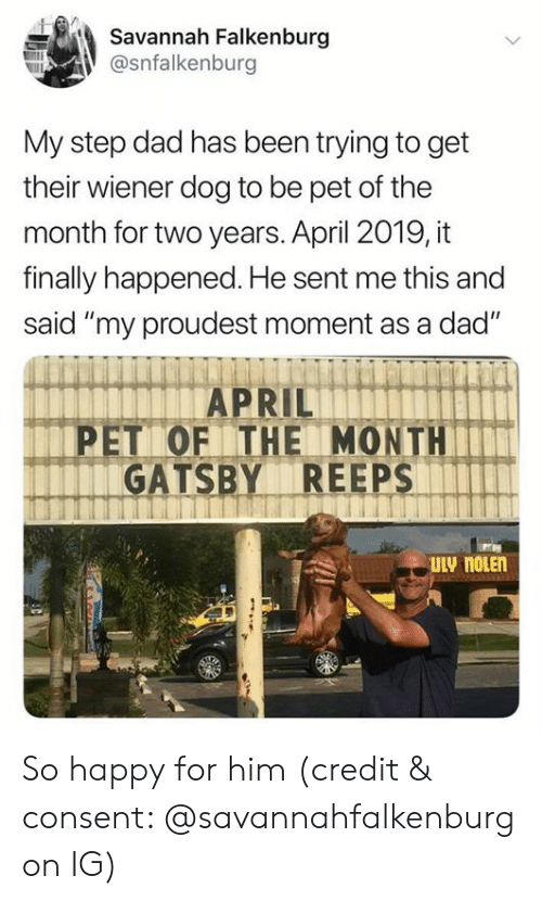 """gatsby: Savannah Falkenburg  @snfalkenburg  My step dad has been trying to get  their wiener dog to be pet of the  month for two years. April 2019, it  finally happened. He sent me this and  said """"my proudest moment as a dad""""  PET OF THE MONTH  GATSBY REEPS  ULV noLEn So happy for him (credit & consent: @savannahfalkenburg on IG)"""