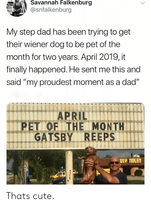 """gatsby: Savannah Falkenburg  @snfalkenburg  My step dad has been trying to get  their wiener dog to be pet of the  month for two years. April 2019, it  finally happened. He sent me this and  said """"my proudest moment as a dad""""  APRIL  PET OF THE MONTH  GATSBY REEPS  ULY NOLEN Thats cute."""
