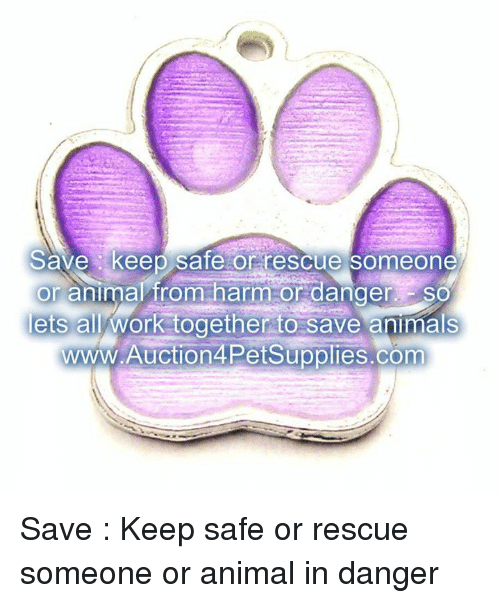 Animals, Memes, and Work: Save keep Sate or rescue Someone  or animal from harm or danger SO  lets all work together to save animals  WWW.Auction4PetSupplies.com Save : Keep safe or rescue someone or animal in danger