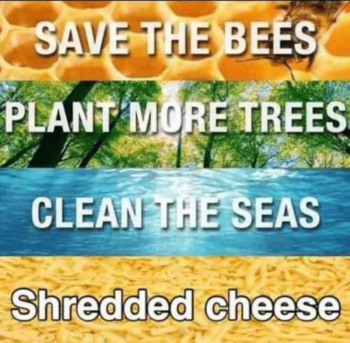 The Bees: SAVE THE BEES  PLANT MORE TREES  CLEAN THE SEAS  Shredded cheese