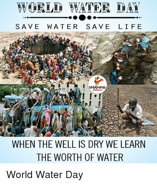 save water: SAVE WATER SAVE LIFE  WHEN THE WELL IS DRY WE LEARN  THE WORTH OF WATER World Water Day