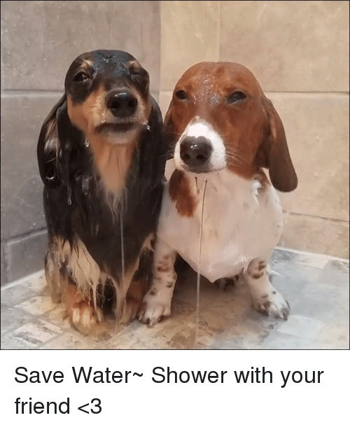 save water: Save Water~ Shower with your friend <3