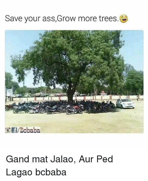 Peds: Save your ass,Grow more trees.  f Bobaba Gand mat Jalao, Aur Ped Lagao bcbaba