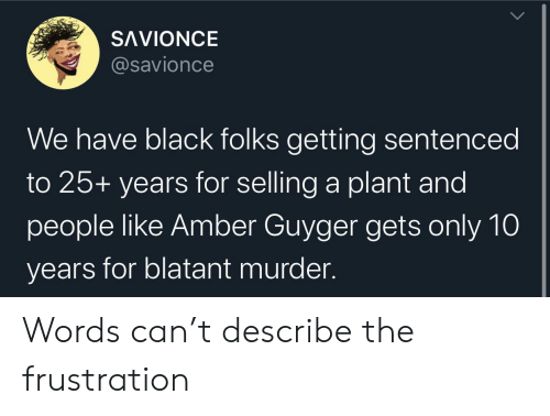 25 Years: SAVIONCE  @savionce  We have black folks getting sentenced  to 25+ years for selling a plant and  people like Amber Guyger gets only 10  years for blatant murder Words can't describe the frustration