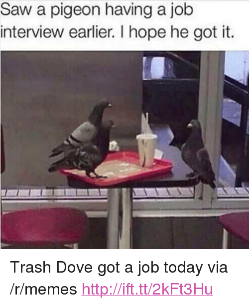 "Trash Dove: Saw a pigeon having a job  interview earlier. I hope he got it. <p>Trash Dove got a job today via /r/memes <a href=""http://ift.tt/2kFt3Hu"">http://ift.tt/2kFt3Hu</a></p>"