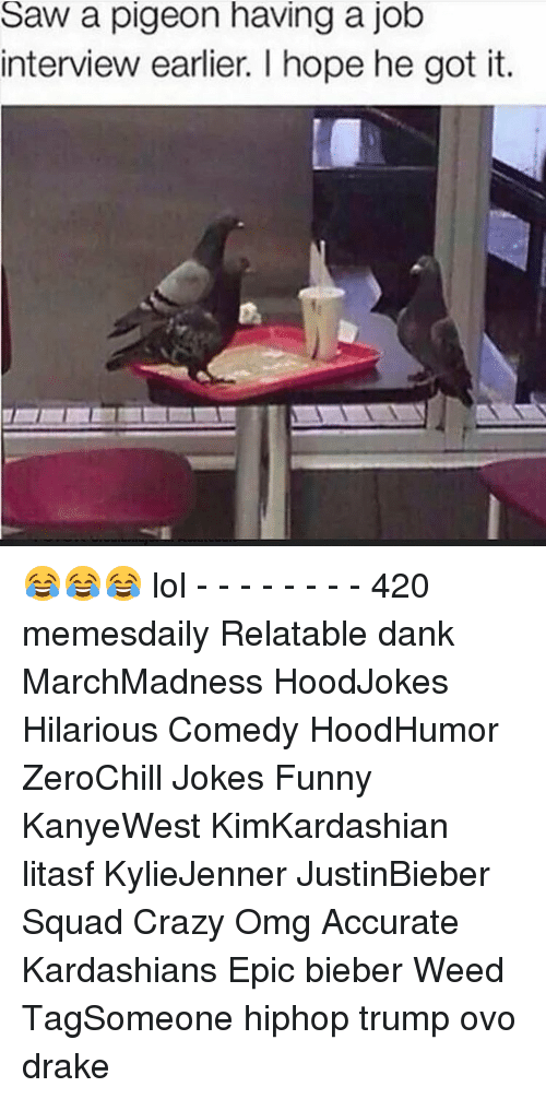 Job Interview, Memes, and 🤖: Saw a pigeon having a job  interview earlier. l hope he got it. 😂😂😂 lol - - - - - - - - 420 memesdaily Relatable dank MarchMadness HoodJokes Hilarious Comedy HoodHumor ZeroChill Jokes Funny KanyeWest KimKardashian litasf KylieJenner JustinBieber Squad Crazy Omg Accurate Kardashians Epic bieber Weed TagSomeone hiphop trump ovo drake