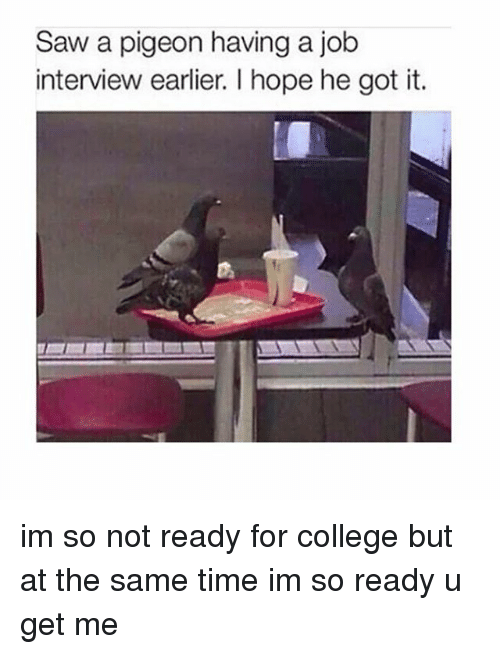 Job Interview, Memes, and Saw: Saw a pigeon having a job  interview earlier. l hope he got it. im so not ready for college but at the same time im so ready u get me