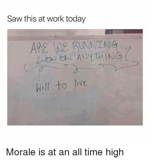 Dank, Saw, and Work: Saw this at work today  ARE WE RUANTNG  will to lie Morale is at an all time high