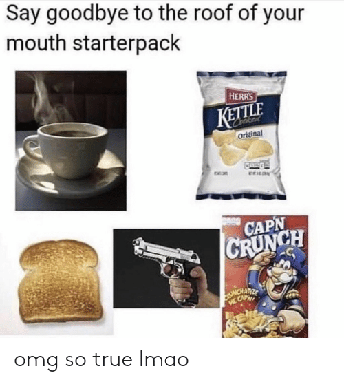 Starterpack: Say goodbye to the roof of your  mouth starterpack  HERRS  KETLE  original  CAPN  CH omg so true lmao