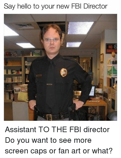 Fbi, Hello, and Memes: Say hello to your new FBI Director Assistant TO THE FBI director Do you want to see more screen caps or fan art or what?