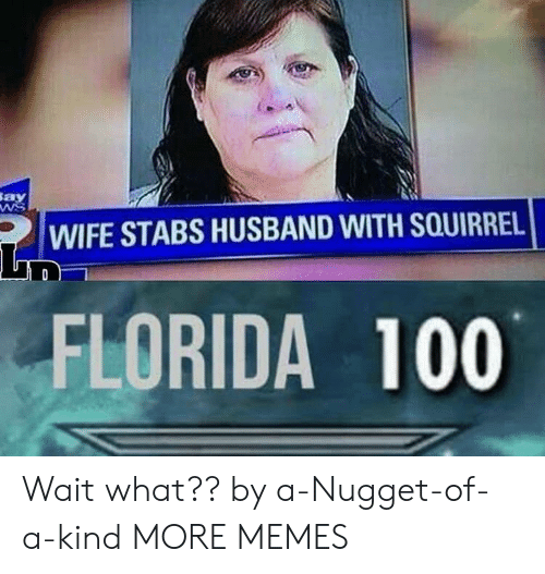 nugget: Say  WIFE STABS HUSBAND WITH SQUIRREL  FLORIDA 100 Wait what?? by a-Nugget-of-a-kind MORE MEMES