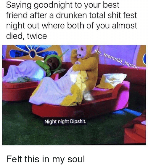 Best Friend, Memes, and Shit: Saying goodnight to your best  friend after a drunken total shit fest  night out where both of you almost  died, twice  the mermaid lagoon  Night night Dipshit. Felt this in my soul