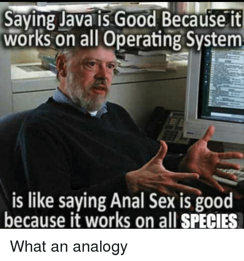 Analogy: Saying Java is Good Because it  works on all Operating System  is like saying Anal Sex is good  because it works on all SPECIES What an analogy