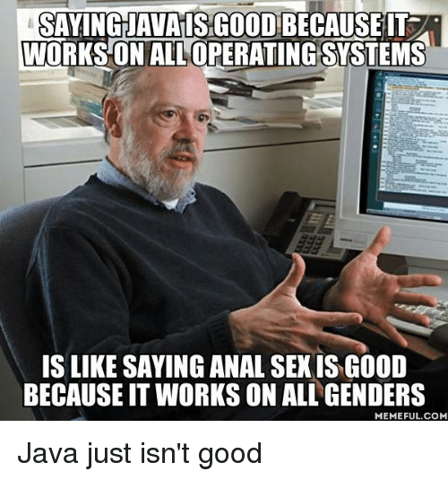 Anal Sex, Meme, and Memes: SAYING JAVAISGOODBECAUSEIT  WORKSON ALL OPERATING SYSTEMS  IS LIKE SAYING ANAL SEX ISG00D  BECAUSEIT WORKS ON ALL GENDERS  MEMEFUL.COM Java just isn't good