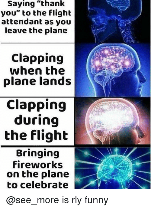 """Funny, Thank You, and Fireworks: Saying """"thank  you"""" to the flight  attendant as you  leave the plane  Clapping  when the  plane lands  Clapping  during  the flight  Bringing  fireworks  on the plane  to celebrate @see_more is rly funny"""