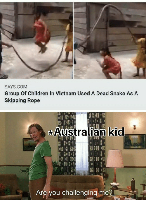 Snake: SAYS.COM  Group Of Children In Vietnam Used A Dead Snake As A  Skipping Rope  Australian kid  Are you challenging me?
