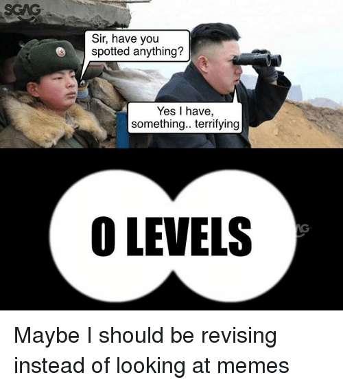 Memes, 🤖, and Yes: SCAG  Sir, have you  spotted anything?  Yes I have,  something.. terrifying  O LEVELS Maybe I should be revising instead of looking at memes