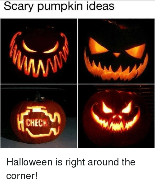 Halloween, Memes, and Pumpkin: Scary pumpkin ideas  CHECK Halloween is right around the corner!