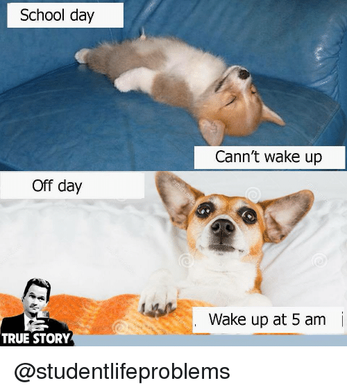 5 AM: School day  Cann't wake up  Off day  Wake up at 5 am  i  TRUE STORY @studentlifeproblems