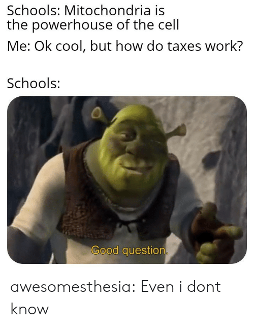 Good Question: Schools: Mitochondria is  the powerhouse of the cell  Me: Ok cool, but how do taxes work?  Schools:  Good question awesomesthesia:  Even i dont know