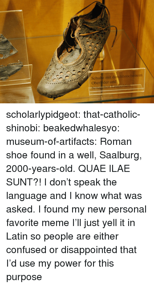 Confused, Disappointed, and Meme: Schulie mit durchbrochenem  Oberleder und scholarlypidgeot:  that-catholic-shinobi: beakedwhalesyo:   museum-of-artifacts:    Roman shoe found in a well, Saalburg, 2000-years-old.    QUAE ILAE SUNT?!   I don't speak the language and I know what was asked.   I found my new personal favorite meme I'll just yell it in Latin so people are either confused or disappointed that I'd use my power for this purpose