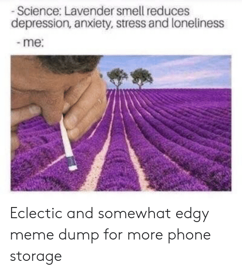 Depression Anxiety: -Science: Lavender smell reduces  depression, anxiety, stress and loneliness  -me: Eclectic and somewhat edgy meme dump for more phone storage
