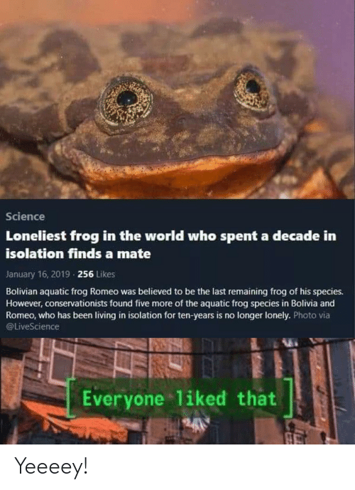 Frog Species: Science  Loneliest frog in the world who spent a decade in  isolation finds a mate  January 16, 2019 256 Likes  Bolivian aquatic frog Romeo was believed to be the last remaining frog of his species.  However, conservationists found five more of the aquatic frog species in Bolivia and  Romeo, who has been living in isolation for ten-years is no longer lonely. Photo via  @LiveScience  Everyone 1iked that  A Yeeeey!