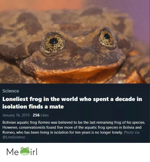 Frog Species: Science  Loneliest frog in the world who spent a decade in  isolation finds a mate  January 16, 2019 256 Likes  Bolivian aquatic frog Romeo was believed to be the last remaining frog of his species.  However, conservationists found five more of the aquatic frog species in Bolivia and  Romeo, who has been living in isolation for ten-years is no longer lonely. Photo via  @LiveScience Me🐸irl
